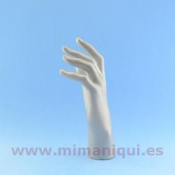 Expositor mão